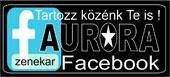 Az Aurora zenekar partnere, a Ciankali